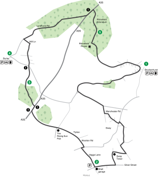 Rhinefield-Loop-Map