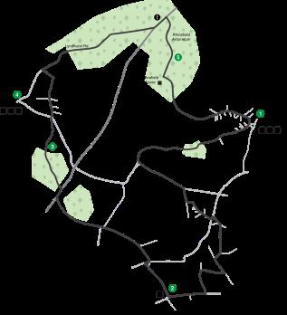 Rhinefield-Loop-Map